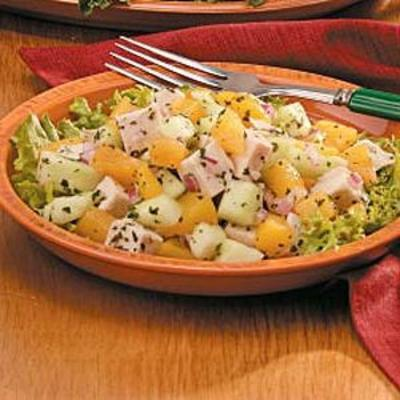 Salade de nectarine au poulet avec vinaigrette à la menthe