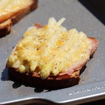 Überbackener spargeltoast (asperges blanches sur du pain grillé)