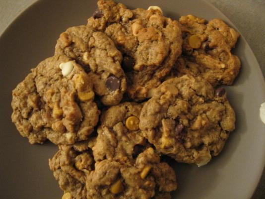 5 cookies à puce