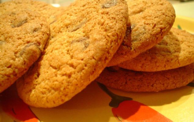 biscuits épicés aux pépites de chocolat