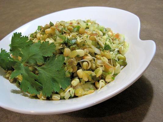 salade de haricots mungo germés (salaad moong)