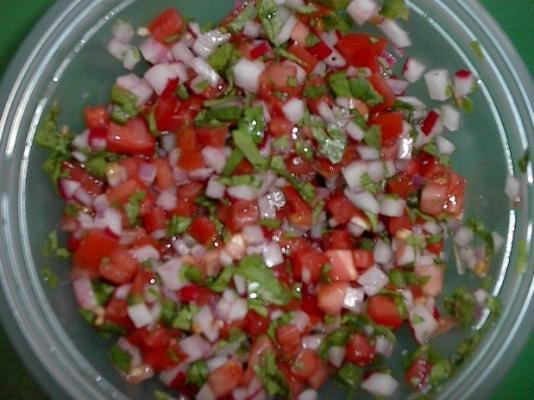 chimol (salsa de radis salvadorien)