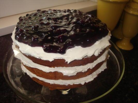 gâteau aux bleuets de maman jo