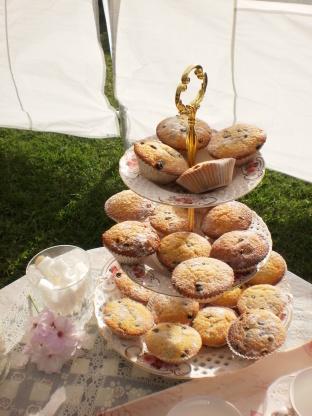 Reine régence gâteaux pour l'après-midi thé de jane austen
